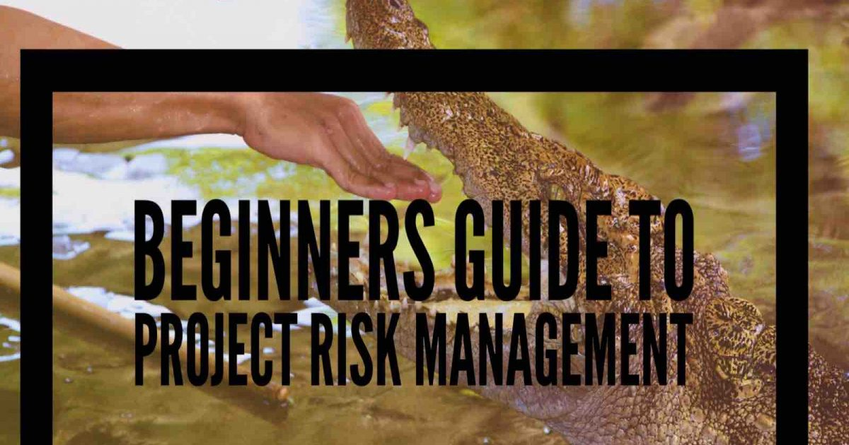 Beginners guide to project risk management project news today