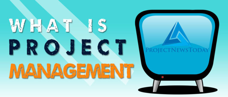What is Project Management Infographic